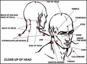 Understand Martial Arts Pressure Points Self Defense