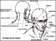 Martial Arts Pressure Points and Self Defense - How do they fit together?