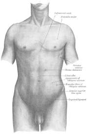Pressure Points Inguinal Crease - Dealing with a larger attacker