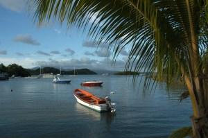 Martinique-Tach_RedGoldGreen