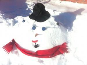 Tempêtes de neige 2013 | Lalema inc.