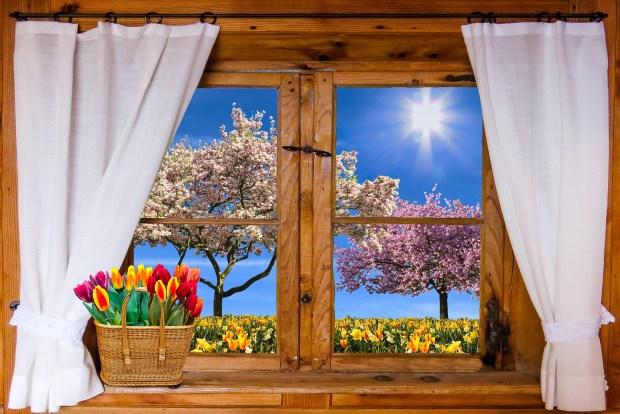 La vue du printemps par la fenêtre