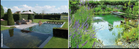 Natural swimming pools new zealand non chemical pools for Pool design auckland