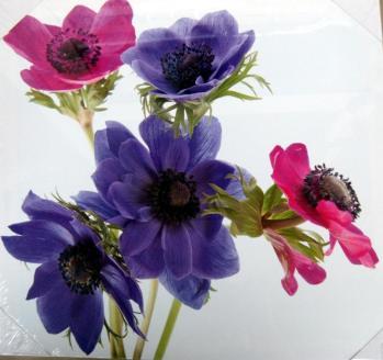 Lienzo flores