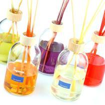 Mikados de aromas surtidos
