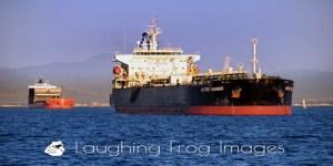 Oceangoing Ships