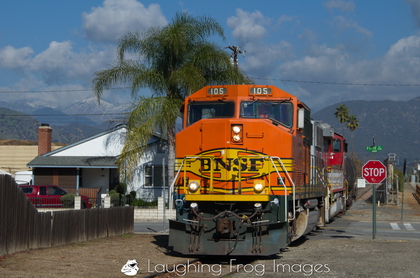Snow, palm trees, and the BNSF Pasadena Subdivision Local in La Verne, CA.