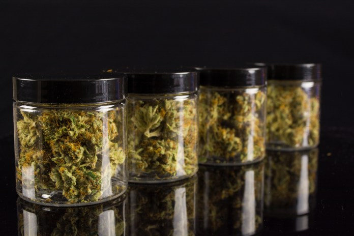 dark weed storing container jars