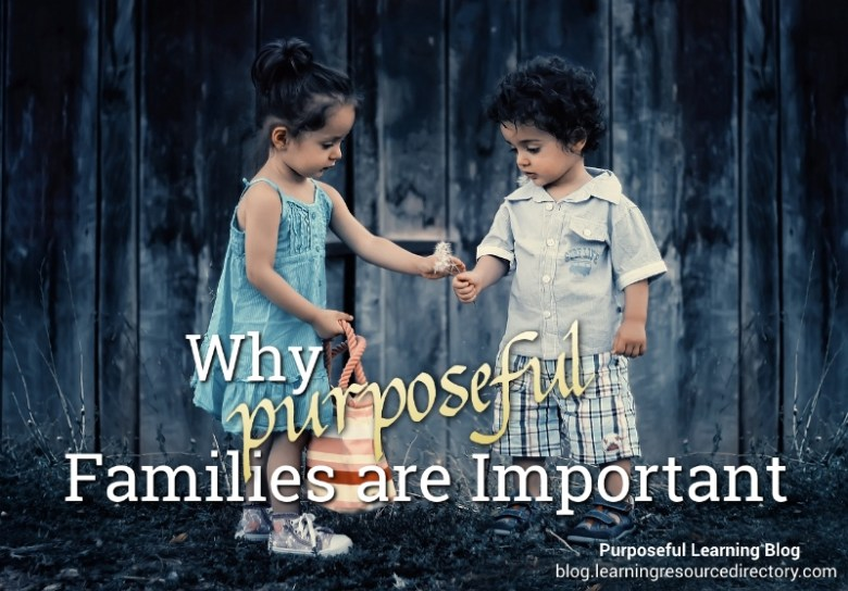 Why Purposeful Families are Important