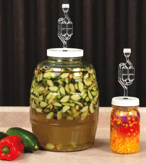 Nervous about fermenting? Try the Perfect Pickler: small or gallon kit, it's nearly foolproof. At Lehmans.com, and Lehman's in Kidron, OH.