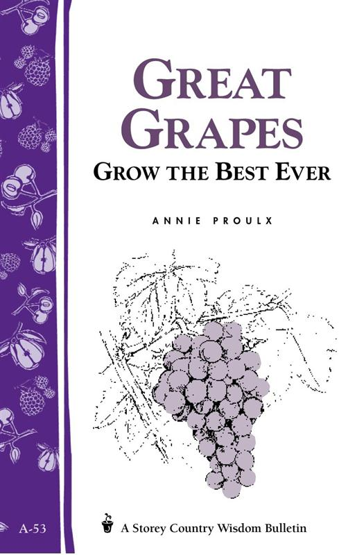 Great Grapes Storey Books pamphlet