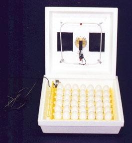 Low Cost Chicken Egg Incubator
