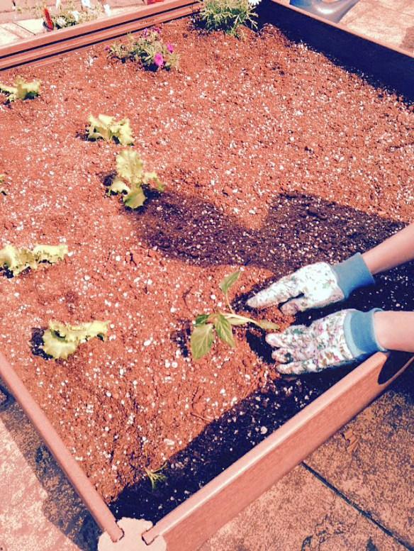 alli-gardening