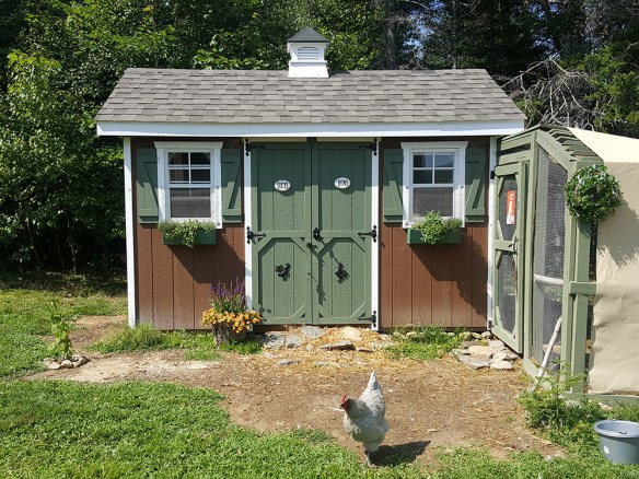 Fancy digs for the chickens