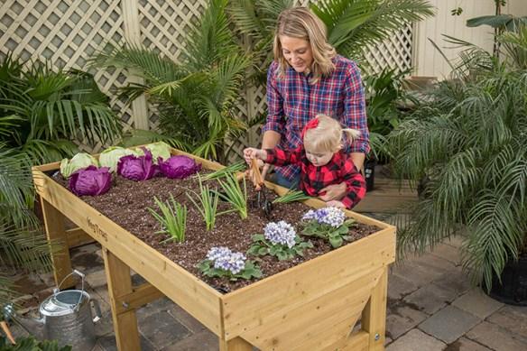 family gardening in elevated garden bed