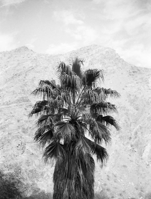 © Vic Garcia