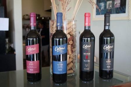 Vin de Cafayate