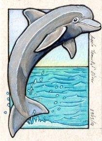 290314-dolphin