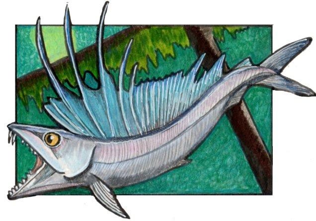 lancetfish