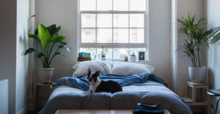 Quelques astuces accessibles pour décorer votre chambre