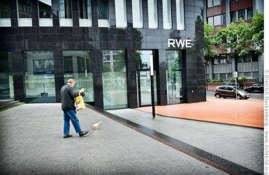 Mann mit Entenküken vor dem RWE-Tower in Dortmund. Foto Dietrich Hackenberg