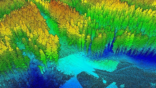 image of GIS and Lidar for Forest Research in Japan