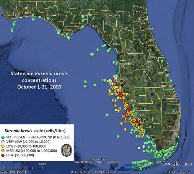 Florida Red Tide- October 2006, Red dots are highest concentration of the harmful algae