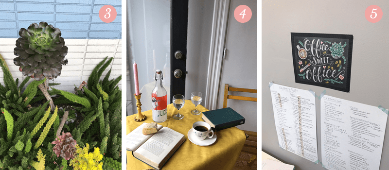 Pretty Ordinary Friday features succulent plants in Los Angeles, French cafe set up for Lily & Val's new spring line photo shoot, new gold leaf chalkboard prints