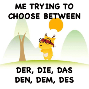 Best way to learn German by LingoDeer
