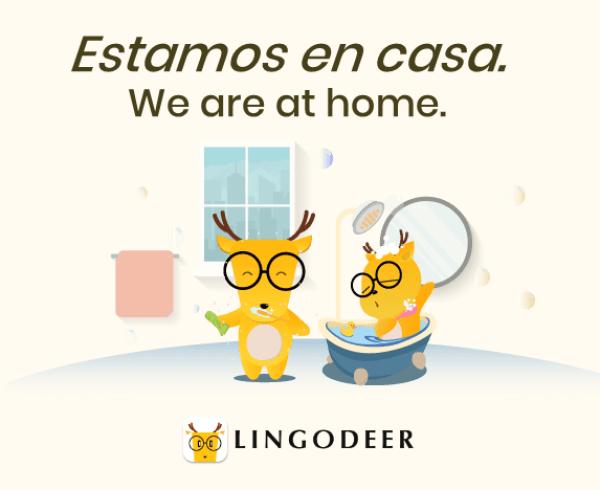 spanish definite and indefinite articles: estamos en casa
