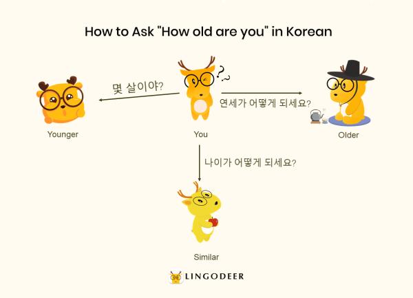 Korean honorifics: 나이 vs. 연세
