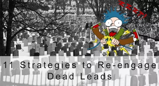 re-engage dead leads
