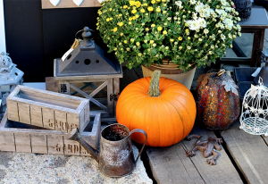 Spruce up your home for Fall - Decorating