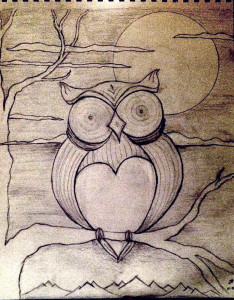 Owl_TaylorSwope