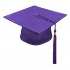 Дипломированный специалист