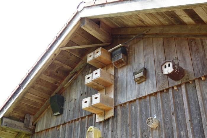 Vogelstation im Kochelseemoor