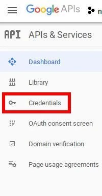 Google APIs Credentials Section