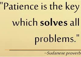"""image with """"Patience is the key which solves all problems"""" quote on it"""