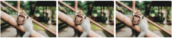 AVIF image format comparison JPEG WebP