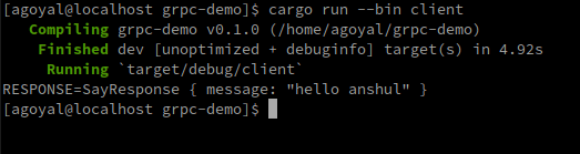 Output for cargo run–bin client