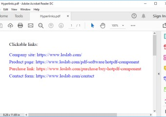 HotPDF Hyperlink Sample