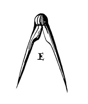 OFFICIAL_LAP_-Logo
