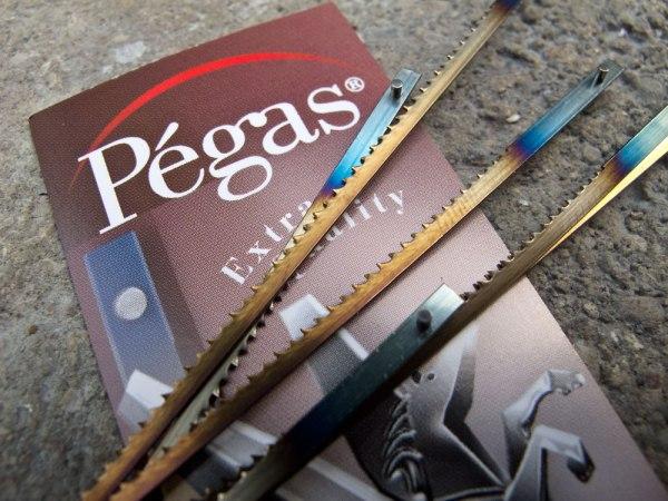 pegas_IMG_0356