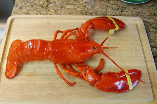 Cooked Lobster on Cutting Board - © LoveToEatAndTravel.com