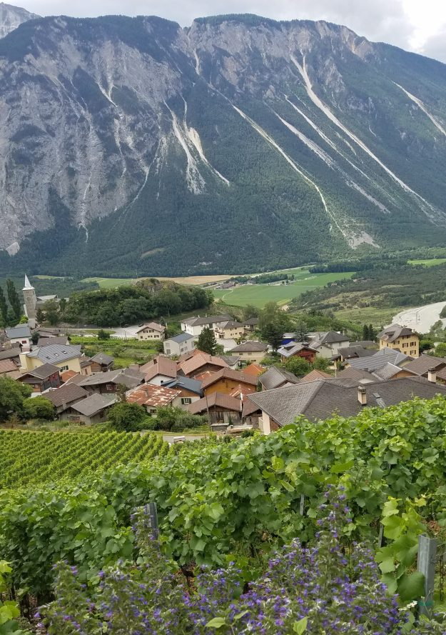Varen view of the butterfly vineyards -Rhone river valley-Alps-village - Credit: Deborah Grossman