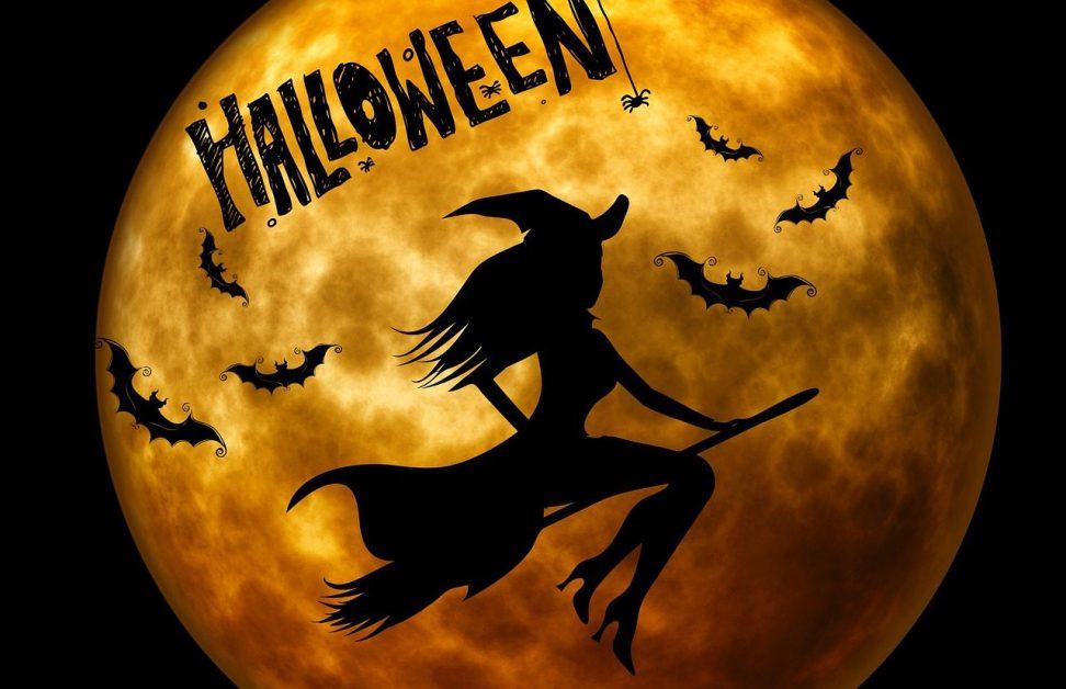 halloween, the witch, weird