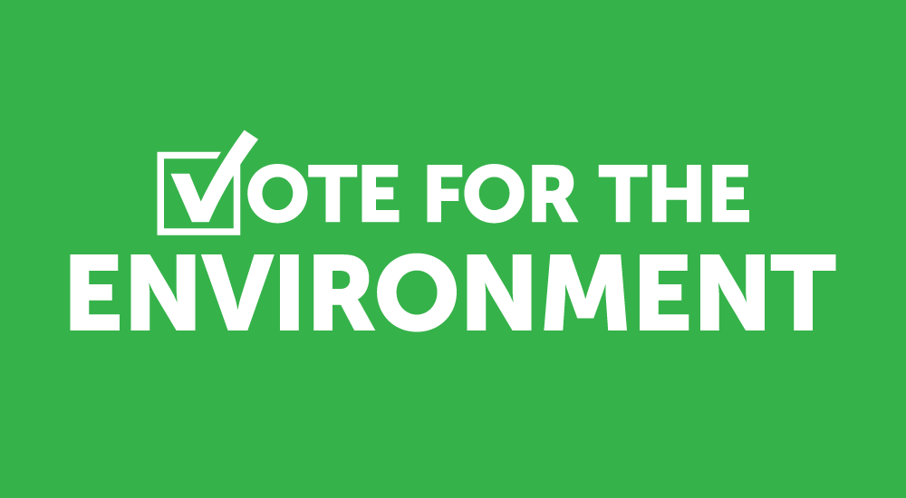 5 Ways to Vote for the Environment