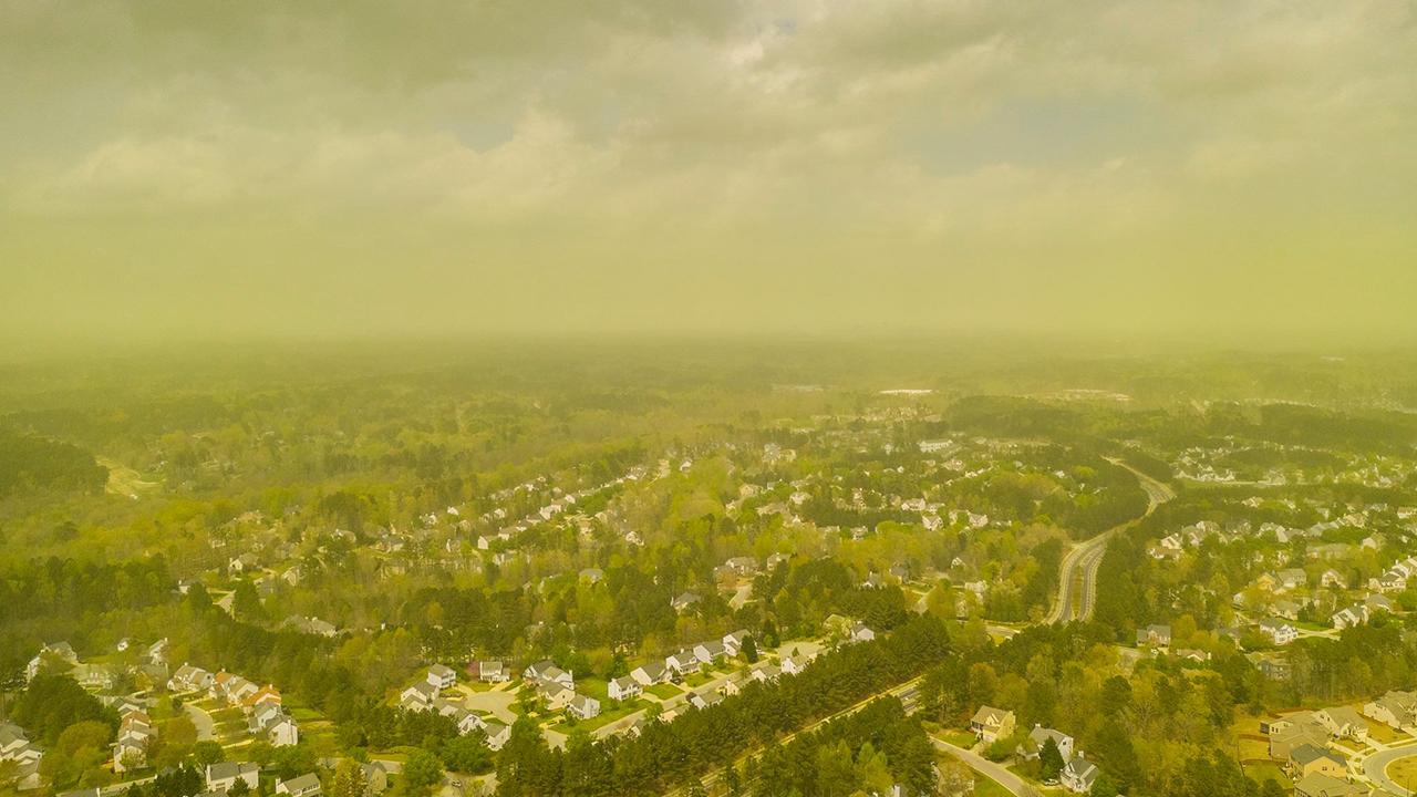 Pollen over Raleigh, NC