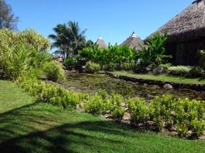 Jardins de Pa'ofa'i (Garden of Paofai) in Papeete French Polynesia.