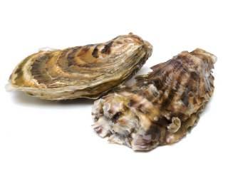 Austern Vitamin-B12-haltige Lebensmittel